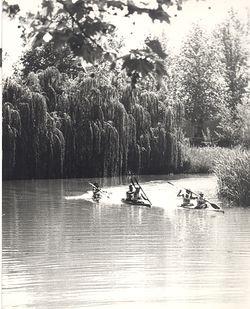 RAPEL 19874.jpg